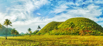 Chocolate Hills. View of The Chocolate Hills. Bohol, Philippines Royalty Free Stock Photography