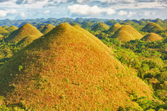 Chocolate Hills. View of The Chocolate Hills. Bohol, Philippines Royalty Free Stock Photos