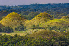 Chocolate Hills Royalty Free Stock Images
