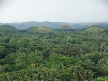 Chocolate hills, Bohol island, Philippines Royalty Free Stock Photo