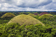 Chocolate Hills of Bohol Island, Philippines Royalty Free Stock Image