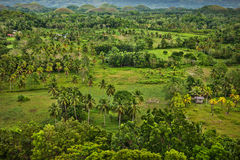 Chocolate Hills,  Bohol Island, Philippines Stock Photography