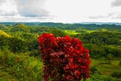 Chocolate Hills, Bohol Island, Philippines. Southeast Asia Stock Image