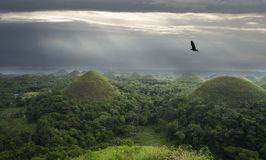 Chocolate hills. Bohol islend. Philippines royalty free stock images