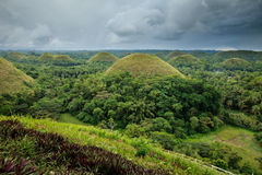 Chocolate Hills in Bohol, Philippines Royalty Free Stock Image