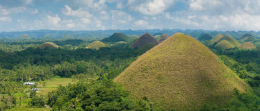 Chocolate hills, Philippines Royalty Free Stock Images