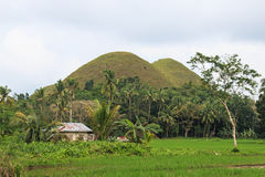 Chocolate hills Philippines, Bohol, and farmer house Royalty Free Stock Image