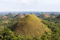 Chocolate Hills, Philippines Royalty Free Stock Image
