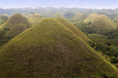 Chocolate hills and plants Stock Photography