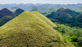 Chocolate Hills, Summer, Bohol Island, Philippines. Green Chocolate Hills in summer time, Bohol Island, Philippines Royalty Free Stock Photography