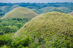 Chocolate Hills, Summer, Bohol Island, Philippines. Green Chocolate Hills in summer time, Bohol Island, Philippines Royalty Free Stock Images
