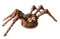 Chocolate homemade spider isolated on white background royalty free stock photography