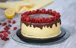 Chocolate honey layer cake Medovik with summer berries.  stock photo
