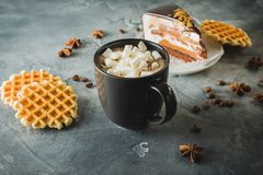 Chocolate hot drink with marshmallows. Chocolate cake and waffles. Chocolate hot drink with marshmallows. Chocolate cake and waffle stock photo