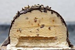 Chocolate ice cream. Tasty chocolate ice cream with crushed chocolate Royalty Free Stock Photo
