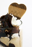 Chocolate ice cream royalty free stock photos