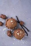 Chocolate ice cream ball royalty free stock photography