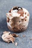 Chocolate ice cream cake. Royalty Free Stock Photo