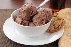 Chocolate ice cream and cookies Royalty Free Stock Images