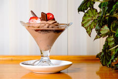 Chocolate ice cream in a sundae dish, side view Stock Images