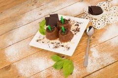 Chocolate ice pops Stock Photos
