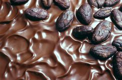 Chocolate icing and cocoa beans royalty free stock image