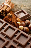 Chocolate with ingredients Stock Photography