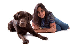 Chocolate Labrador Dog with his owner Stock Images