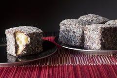 Chocolate Lamingtons - foco selectivo horizontal Imagen de archivo libre de regalías