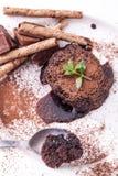 Chocolate Lava Cake foto de stock
