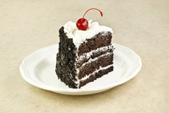 Chocolate Layer Cake Stock Image