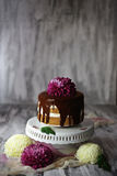 Chocolate layer cake with chrysanthemum on top Stock Photography