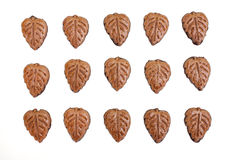 Chocolate leaf shaped cookies Royalty Free Stock Photo