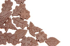 Chocolate leaves Stock Photo
