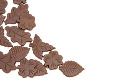 Chocolate leaves Stock Photos