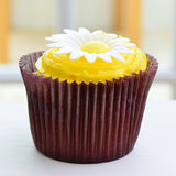 Chocolate lemon cupcake Royalty Free Stock Photos