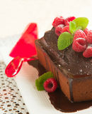 Chocolate loaf cake with chocolate frosting and raspberry Royalty Free Stock Image
