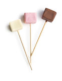 Chocolate lollipos Stock Images