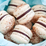 Chocolate macarons Stock Photos