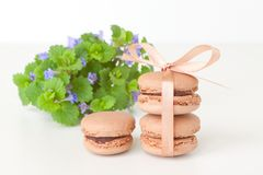 Chocolate macaroon  with bouquet of wildflowers Royalty Free Stock Images