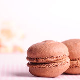Chocolate macaroons Royalty Free Stock Photography