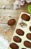 Chocolate madeleines Stock Image