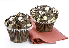 Chocolate Marshmallow Muffins Royalty Free Stock Photos