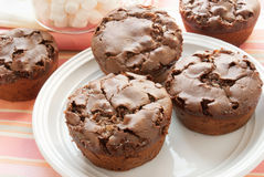 Chocolate marshmallow muffins. Homemade chocolate marshmallow muffins on a white plate with mini-marshmallows in the background. Selective Focus and shot in Royalty Free Stock Photos
