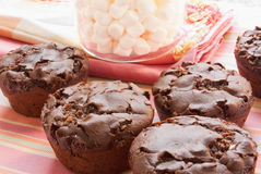 Chocolate Marshmallow Muffins Stock Image