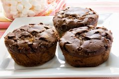 Chocolate Marshmallow Muffins on White Square Plate Royalty Free Stock Photography
