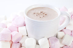 Chocolate and Marshmallows Royalty Free Stock Images