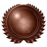 Chocolate medal Stock Image