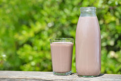Chocolate milk. In the bottle and in the cup outdoors Royalty Free Stock Image