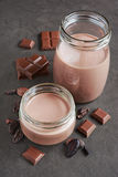 Chocolate milk with pieces of chocolate bar and cacao beans Stock Photography